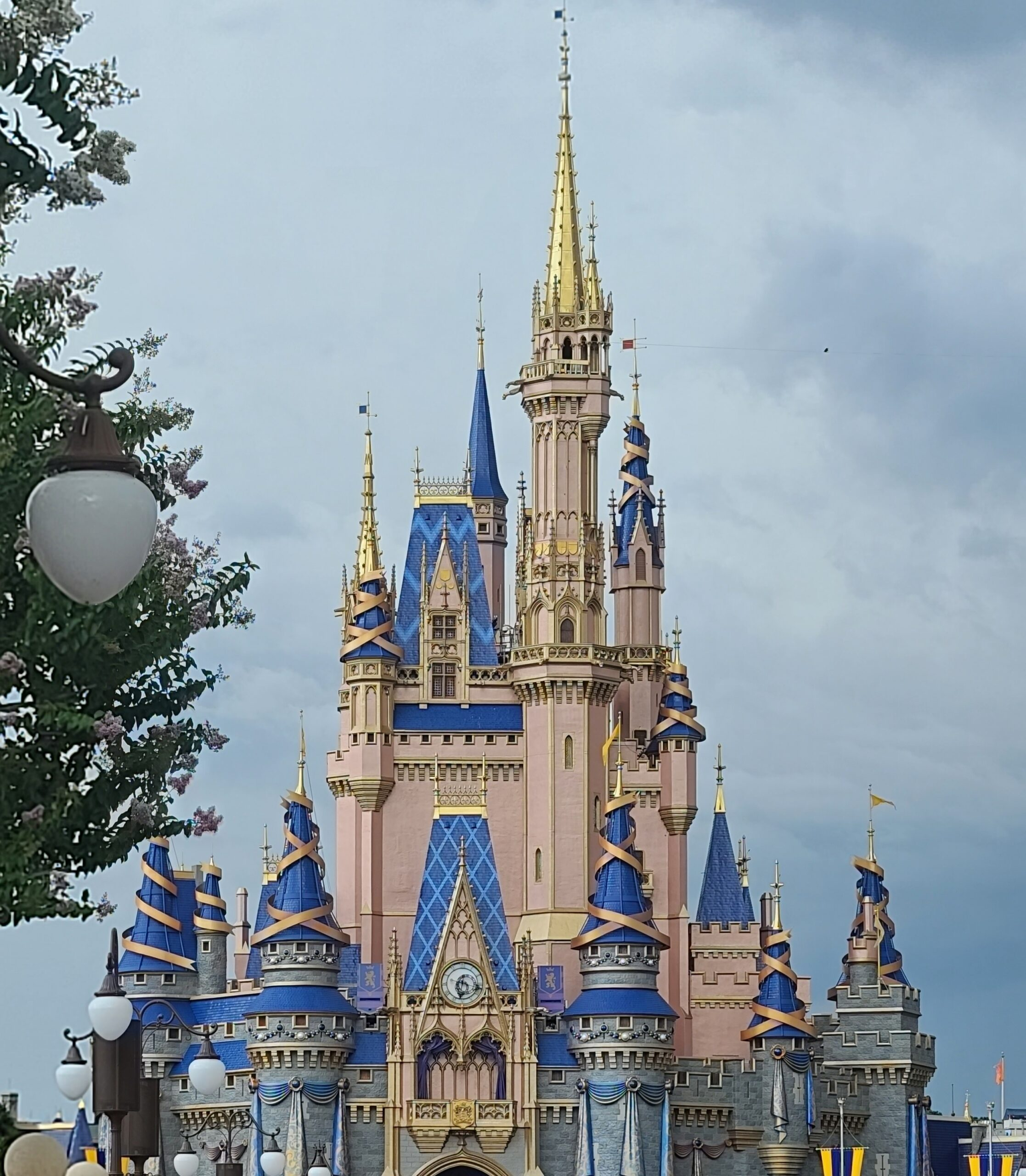 Disney College Program reopens applications