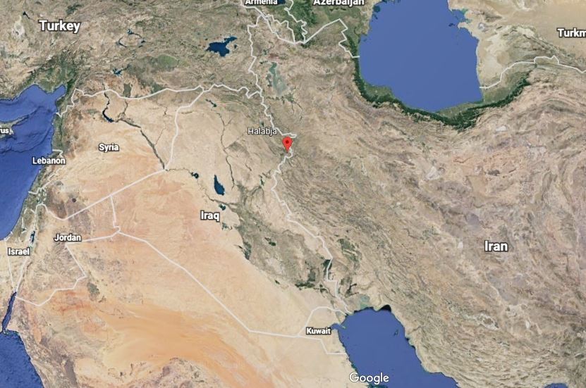 Iranians report at least 61 dead, 300 injured from quake